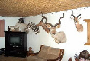 Bergplaats Game Lodge, Beaufort West